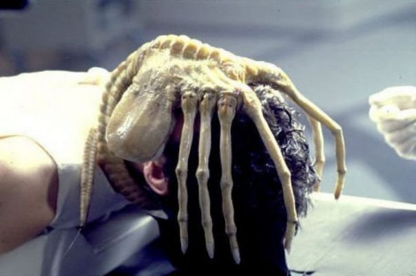 the facehugger