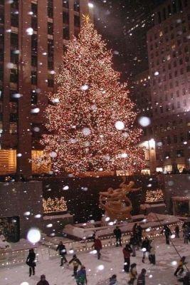 ext tree light