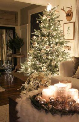 living room tree