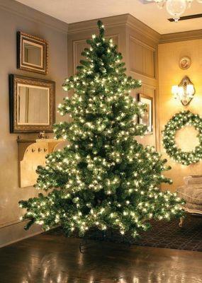 fairy lights Christmas tree
