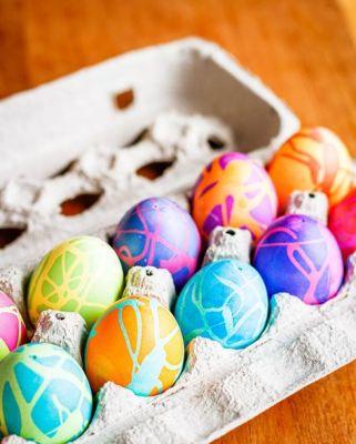 vibrant egg carton