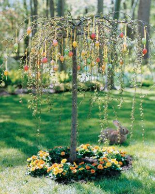 Martha tree