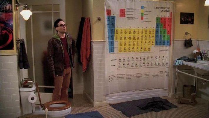 Leonard inside his and Sheldon's bathroom.