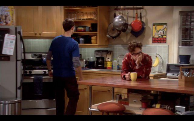 Sheldon and Leonard in their kitchen.