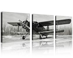 QICAI Black and White Vintage Airplane Wall Art